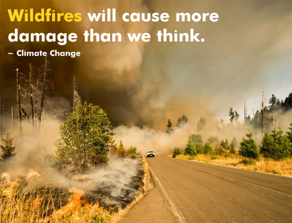 Wildfires will cause more damage than we think. - Climate Change