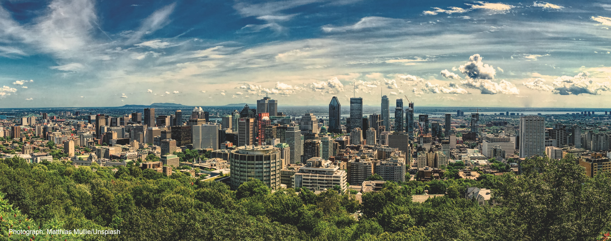 View of montreal from the top of Mont Royal